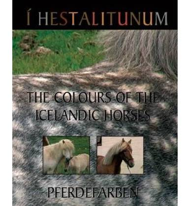 DVD Colours of the Icelandic Horses